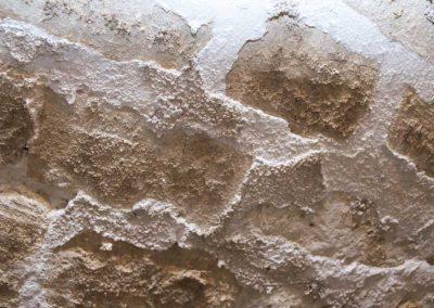 mineralizante2